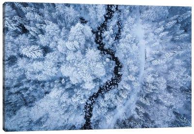 A Freezing Cold Beauty Canvas Art Print