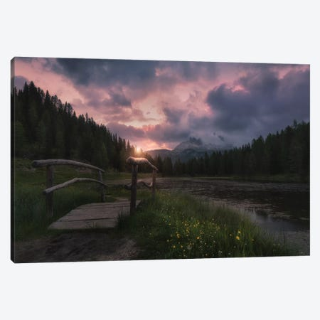 [ ] Canvas Print #OXM5079} by David Martin Castan Canvas Artwork