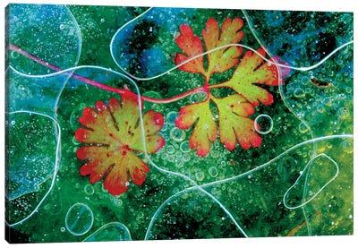 Thaw Canvas Art Print
