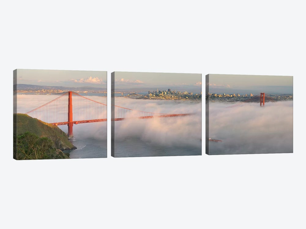 Engulfed by David Scarbrough 3-piece Canvas Wall Art