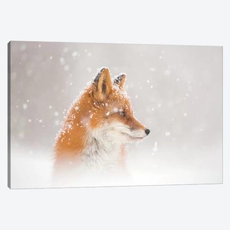 Snow Is Fallinga¦ Canvas Print #OXM5092} by Denis Budkov Canvas Wall Art