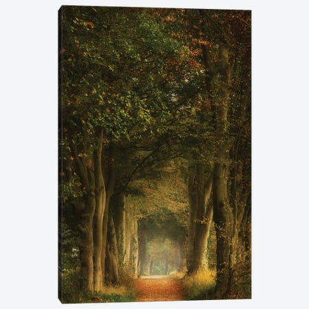 Daydreamer Canvas Print #OXM5106} by Ellen Borggreve Canvas Print
