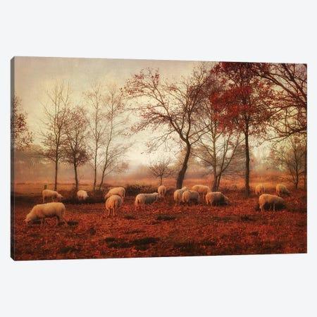 Last Days Of Autumn Canvas Print #OXM5110} by Ellen van Deelen Art Print