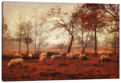 Last Days Of Autumn Canvas Art Print