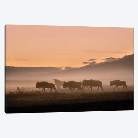 Early Morning In Serengeti 3-Piece Canvas #OXM5121} by Fabrizio Moglia Canvas Art