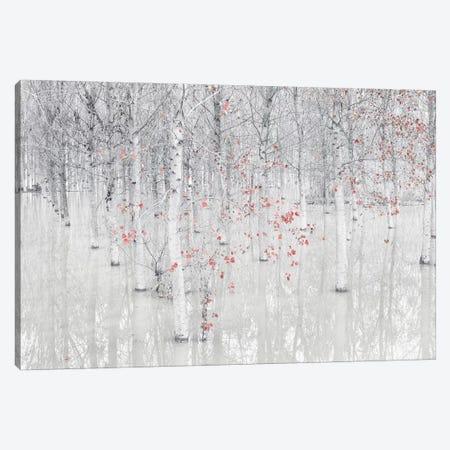 Red & White Canvas Print #OXM5124} by Fiorenzo Carozzi Art Print