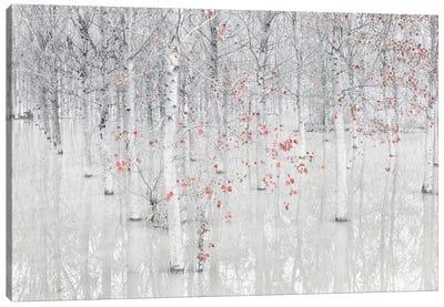 Red & White Canvas Art Print