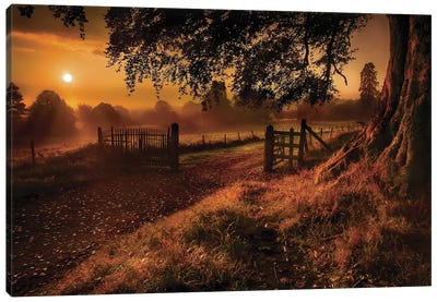 Autumn Sunrise Canvas Art Print