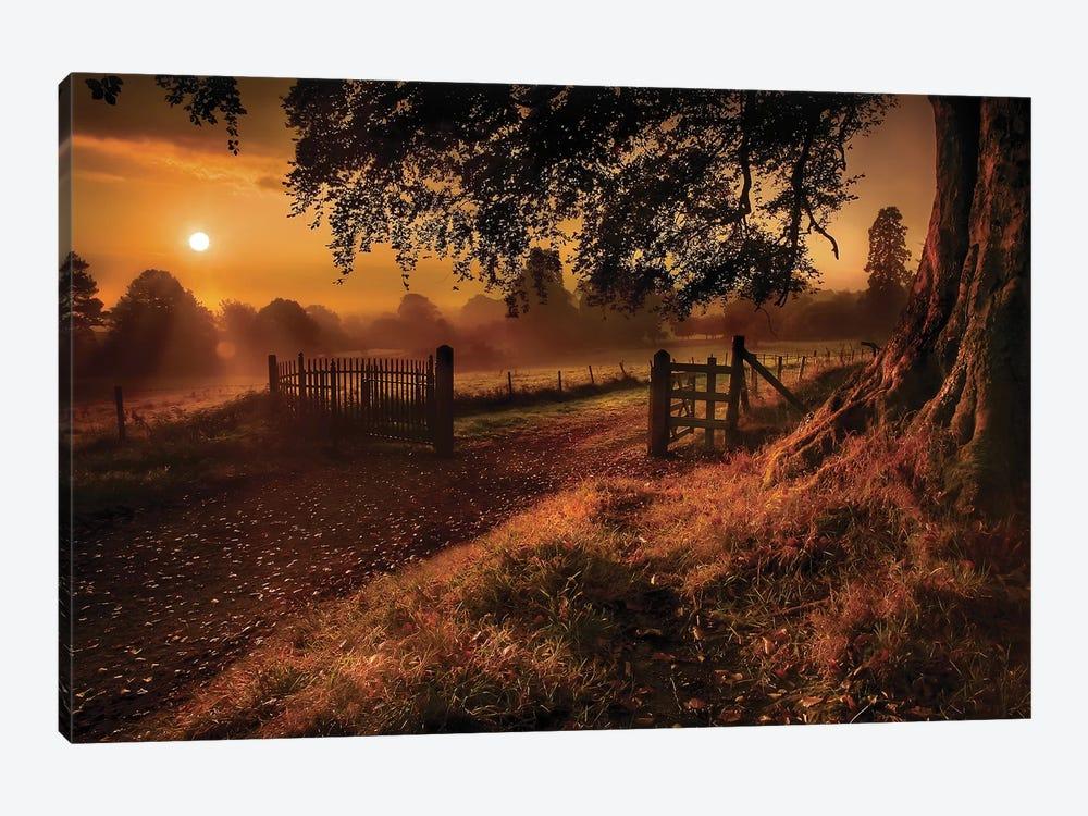 Autumn Sunrise by Gary Mcparland 1-piece Canvas Wall Art