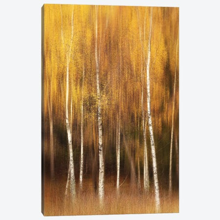 Autumn Canvas Print #OXM5144} by Gustav Davidsson Canvas Print