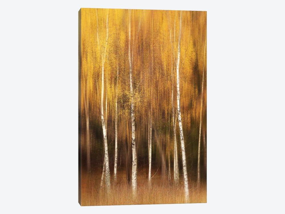Autumn by Gustav Davidsson 1-piece Canvas Wall Art
