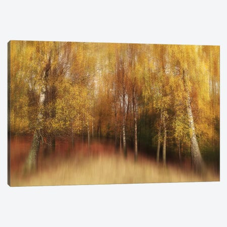 Autumn Impression Canvas Print #OXM5145} by Gustav Davidsson Art Print