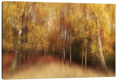Autumn Impression Canvas Art Print