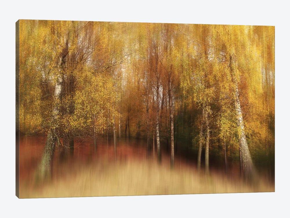 Autumn Impression by Gustav Davidsson 1-piece Canvas Print