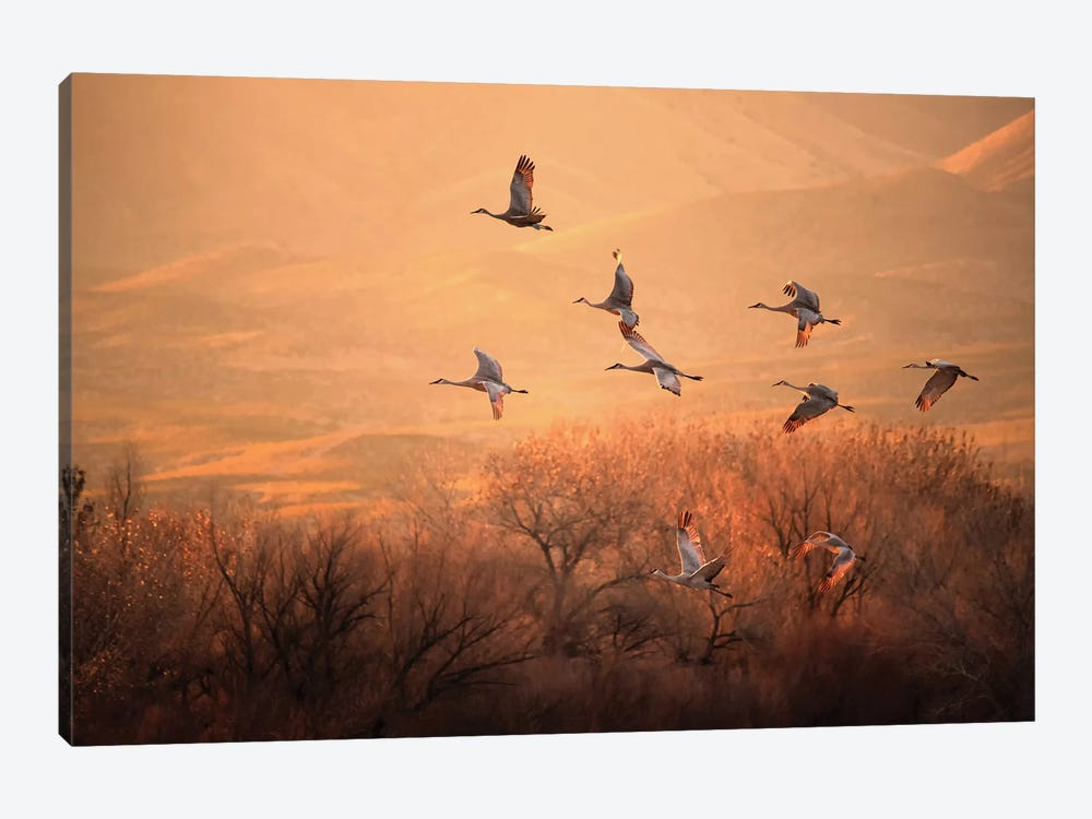 Golden Time by Hao Jiang 1-piece Canvas Artwork