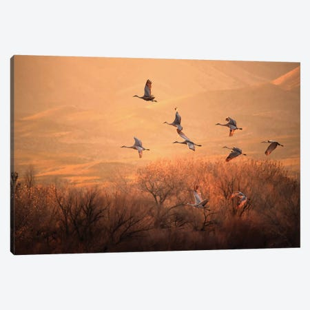 Golden Time Canvas Print #OXM5148} by Hao Jiang Canvas Wall Art