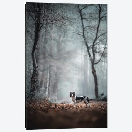 """Come Forth Into The Light Of Things, Let Nature Be Your Teacher."""" (William Wordsworth) Canvas Print #OXM5150} by Heike Willers Canvas Print"""