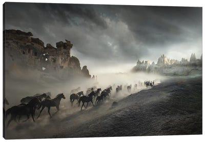 Migration Canvas Art Print