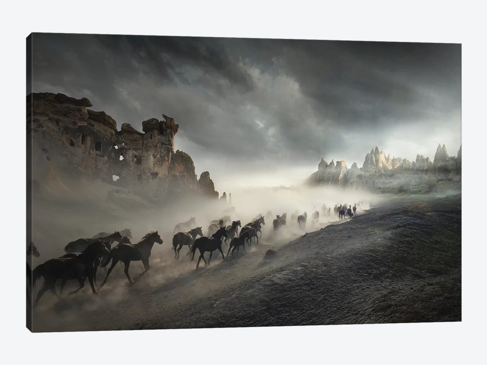 Migration by Hüseyin Taşkın 1-piece Canvas Wall Art