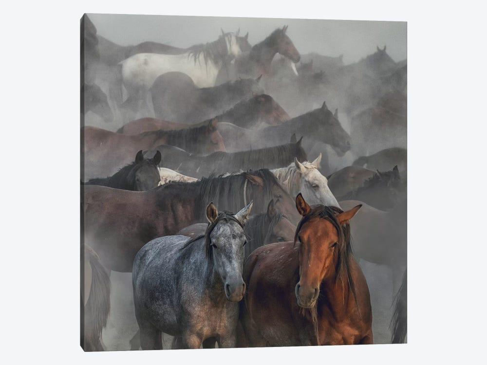 Two Horses by Hüseyin Taşkın 1-piece Art Print