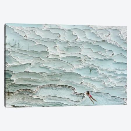 Turquoise Paradise Canvas Print #OXM5171} by Igor Tinak Canvas Print