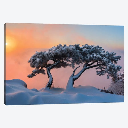 Living Together Canvas Print #OXM5182} by Jaeyoun Ryu Canvas Wall Art