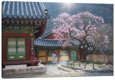 The Scent Of Spring Canvas Art Print