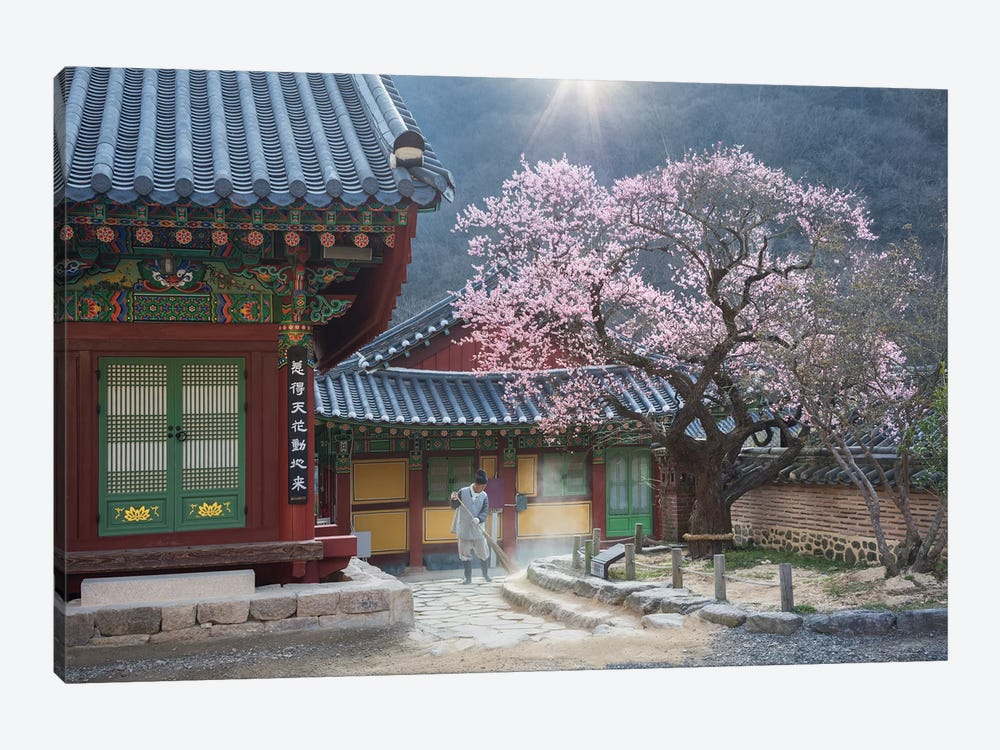 The Scent Of Spring by Jaeyoun Ryu 1-piece Canvas Wall Art