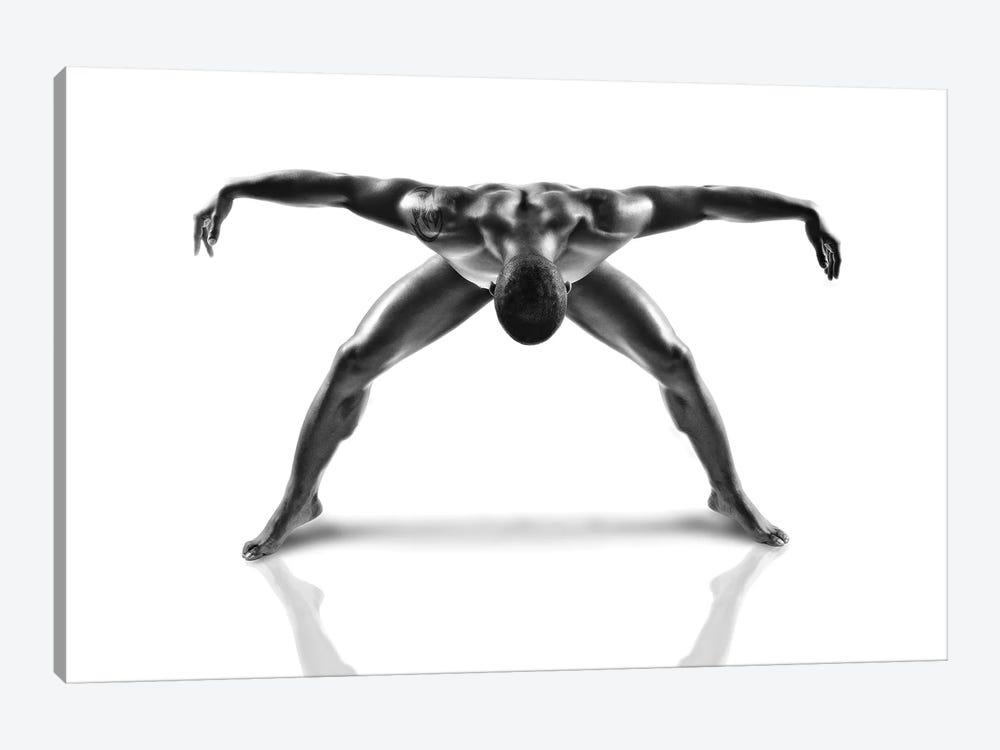 Metallic Nude 3 by Jerome Licois 1-piece Art Print