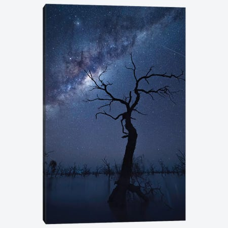 The Tree Canvas Print #OXM5211} by Jingshu Zhu Canvas Artwork