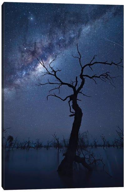 The Tree Canvas Art Print