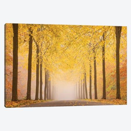 Autumn Road Canvas Print #OXM5231} by keller Canvas Wall Art