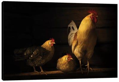 Farm Animals Canvas Art Print