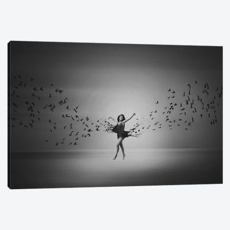 Ballerina Flight Of Birds Canvas Print #OXM5266} by Mark Biwit Canvas Art