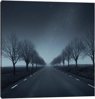 Winter Way Canvas Art Print