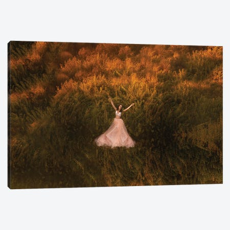 Natalia In The Field Canvas Print #OXM5290} by Mike Darzi Canvas Artwork