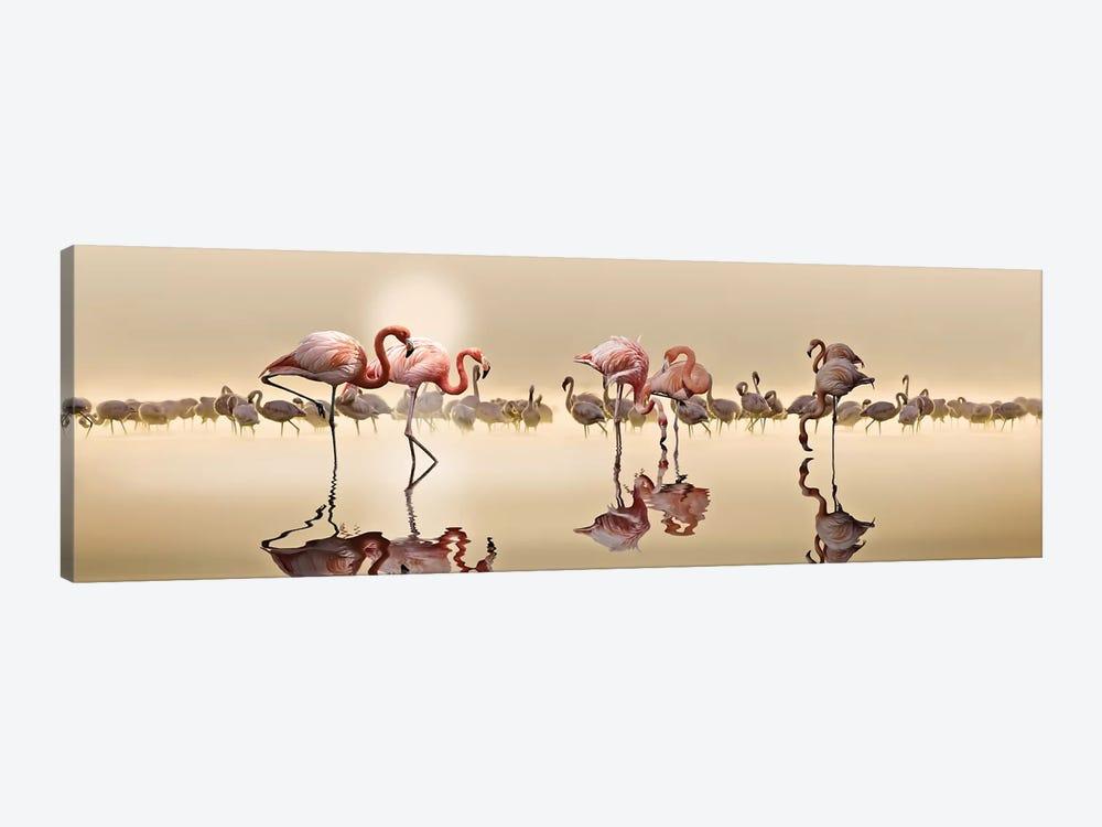 Flamingos by Nasser Osman 1-piece Canvas Print