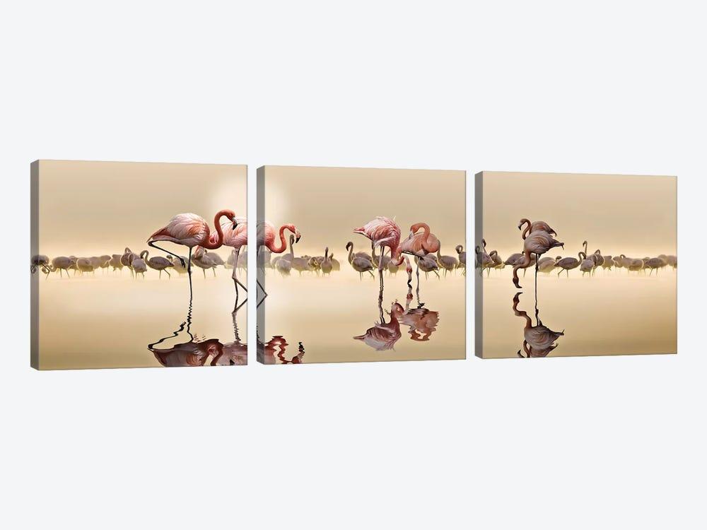 Flamingos by Nasser Osman 3-piece Canvas Art Print