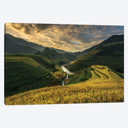 Riceterrace ( Vietnam) Canvas Print #OXM5377} by Sarawut Intarob Canvas Art