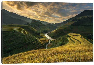 Riceterrace ( Vietnam) Canvas Art Print