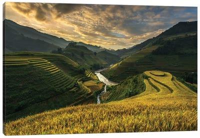 Riceterrace ( Vietnam) Canvas Art Print