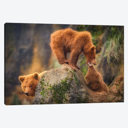Playing In The Heights Canvas Print #OXM5394} by Sergio Saavedra Ruiz Canvas Wall Art