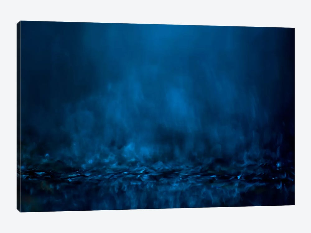 #1 by Willy Marthinussen 1-piece Canvas Artwork