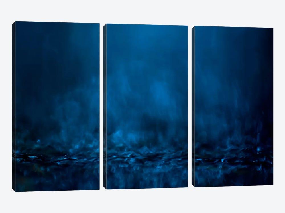 #1 by Willy Marthinussen 3-piece Canvas Artwork