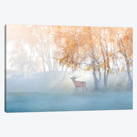 Elk Lost In Mist Canvas Print #OXM5404} by Simoon Canvas Artwork