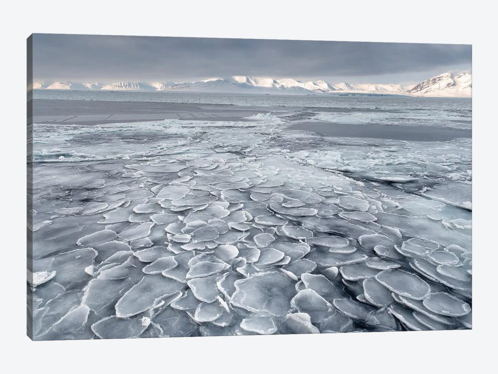 Pancake Ice by Susanne Landolt 1-piece Art Print