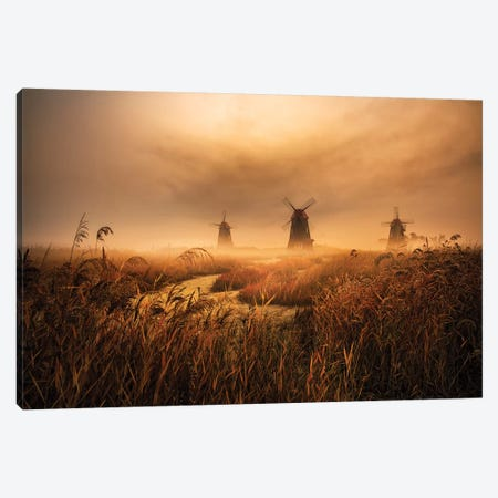 A Fascinating Morning Canvas Print #OXM5427} by Tiger Seo Canvas Art