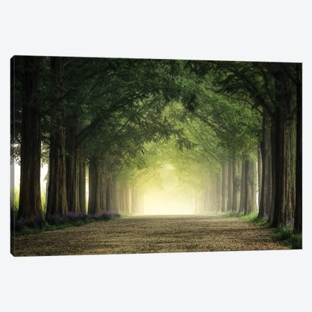 Foggy Morning Canvas Print #OXM5428} by Tiger Seo Canvas Print