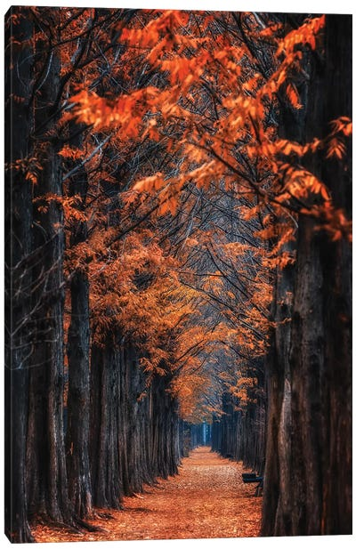 Way To Winter Canvas Art Print