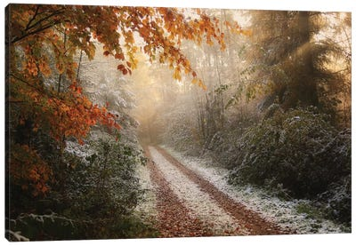 Frosty Fall Canvas Art Print
